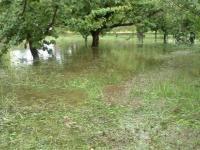 H220831池になった果樹園
