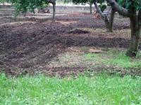H220924芝の種蒔き準備