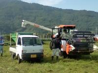 H221016ソバの収穫