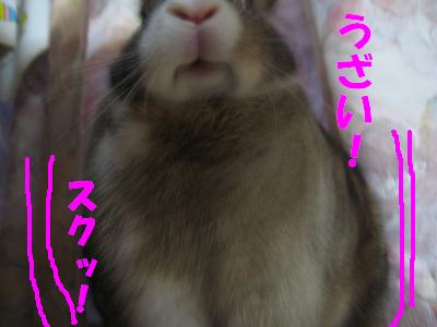 IMG_うっかり顔5648