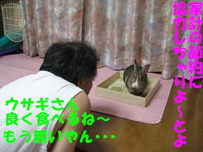 IMG_牧草6236
