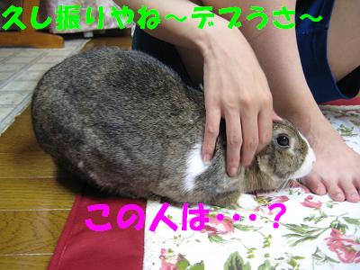 IMG_こころさん6400