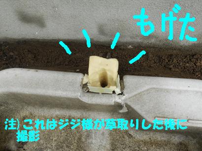 DSCN水栓0434