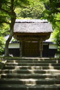 鎌倉2013−6