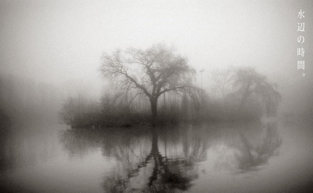 foggy02.jpg