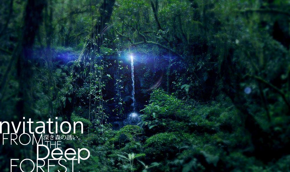 forest3333.jpg