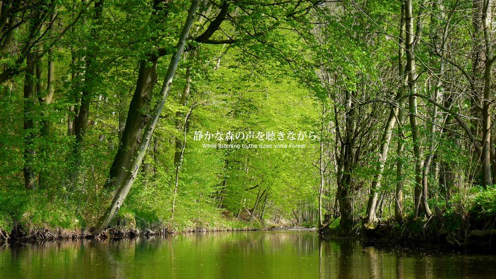 greengreen002.jpg