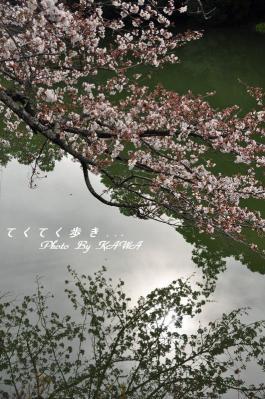 2弓削神社_3188