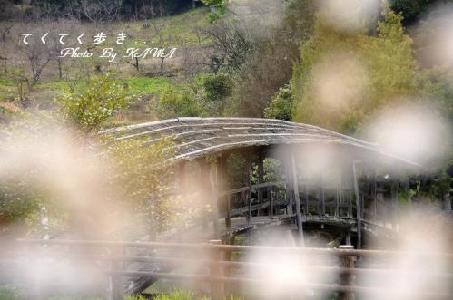 4弓削神社_3198