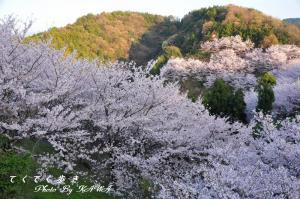 8谷上山_4046