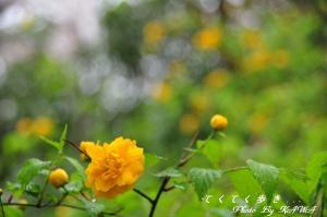 10塩ヶ森_4453