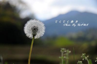 7井内_5417