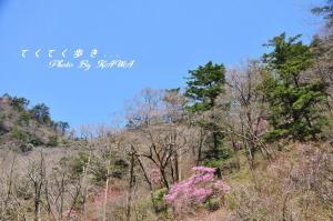 6林道_6402