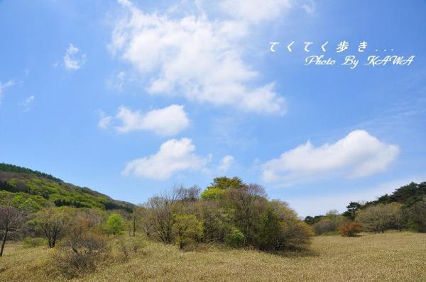 11竜神平_7081