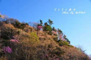 3林道11.05.15