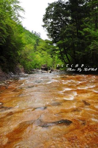5面河11.05.15