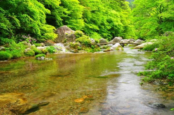 6小田深山11.05.21