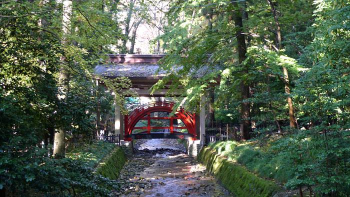弥彦神社 新潟県 6