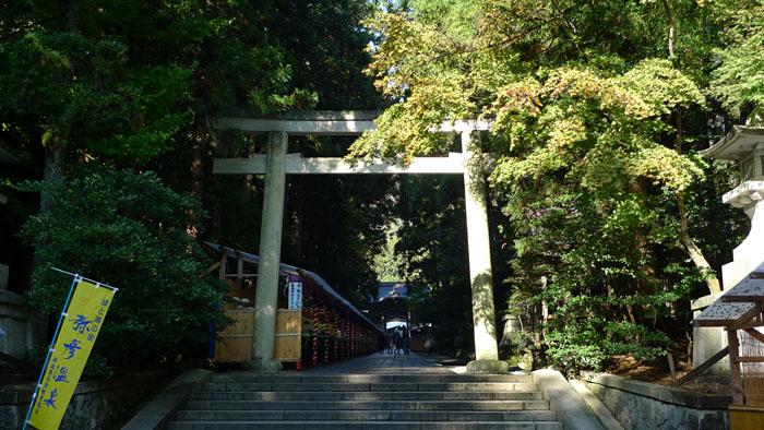 弥彦神社 新潟県 8