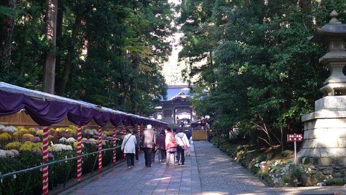 弥彦神社 新潟県 7