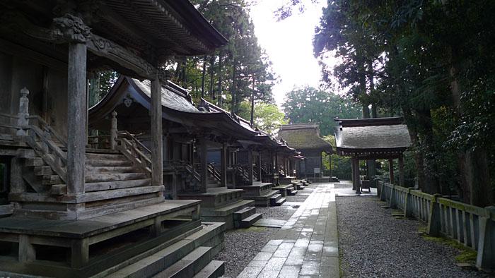 弥彦神社 新潟県 18
