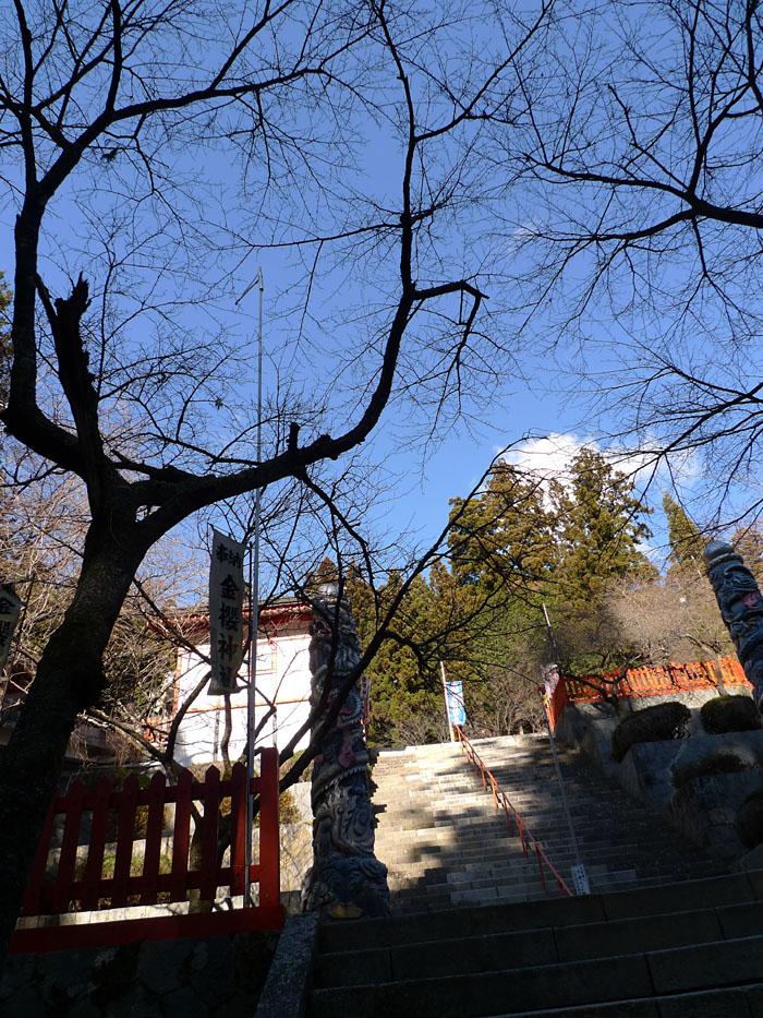 金櫻神社 山梨 8