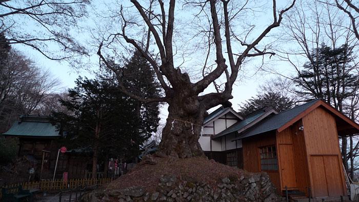 熊野皇大神社 軽井沢 6