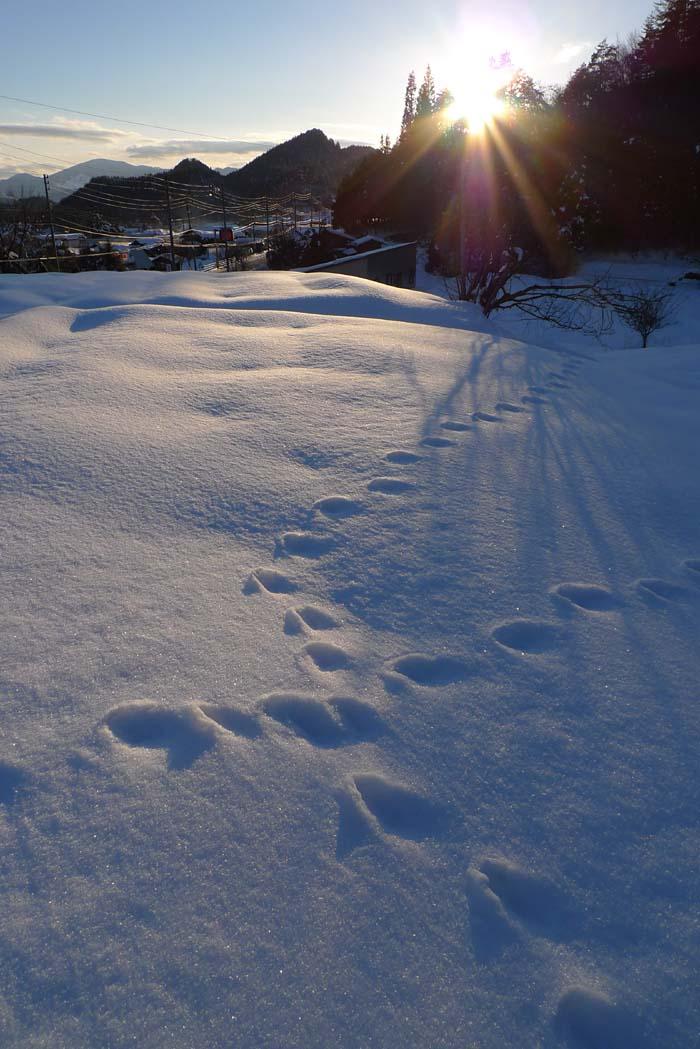 夕陽 足跡 飛騨高山
