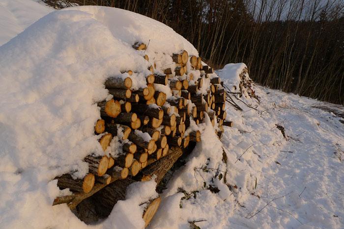 山仕事 2013 冬 2
