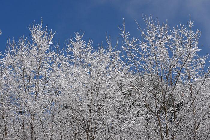 雪景色 再び 2013年4月 1