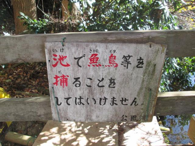 鎌倉 023