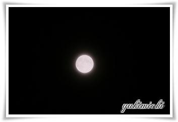仲秋の名月☆