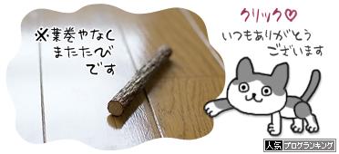 blogrankingbanr0245