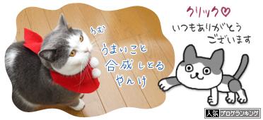 blogrankingbanr0334