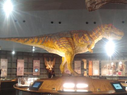 111115_恐竜