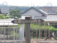 IMG_8855.jpg