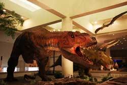 リアル恐竜
