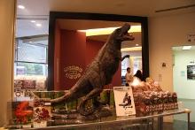 恐竜みやげ