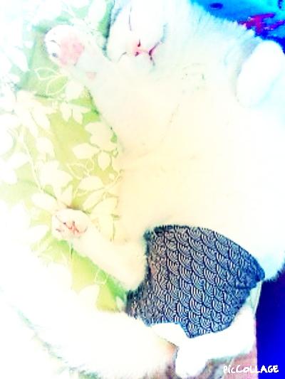 fc2blog_20140912174631f8b.jpg