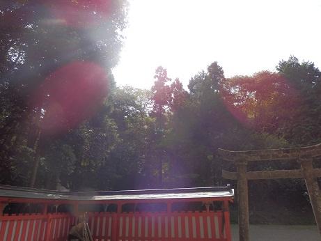 2012102505.jpg