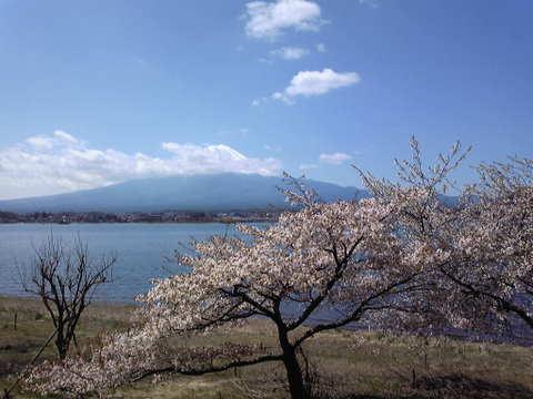 チャレンジ富士五湖2