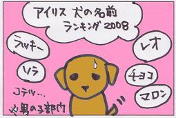 dog-name100302