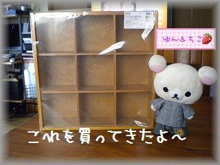 ちこちゃん日記★74★どうやって飾る?-2