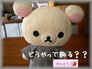ちこちゃん日記★74★どうやって飾る?-1