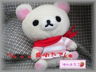 ちこちゃん日記★78★富士芝桜まつり★-4