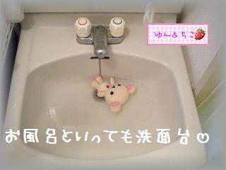ちこちゃん日記特別編★6★お風呂大好き♪-3