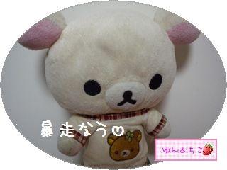 暴走の秋2010★10★狭き門-1