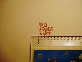 P5290347.jpg