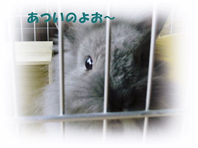 P7051088.jpg