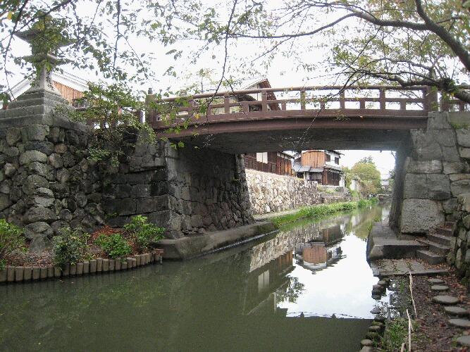 IMG_1724近江